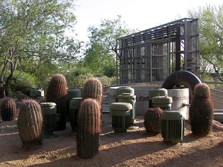 Pumps Cactus